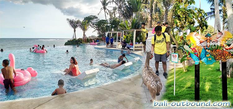 Harga Tiket Masuk Flamingo Beach Club